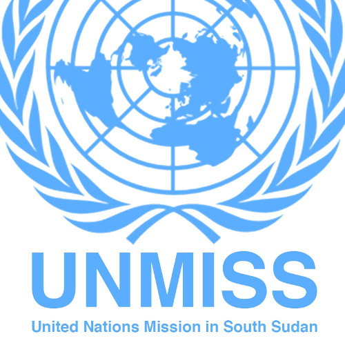 Image result for UNMISS